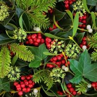 Servietten 33x33 cm - Berries and Plants