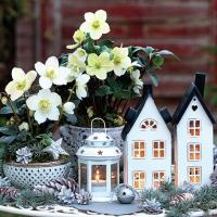 Servietten 33x33 cm - Lovely Decorations