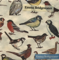 Servietten 25x25 cm - Britische Vögel