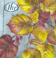 Servietten 25x25 cm - Fall Garden grey