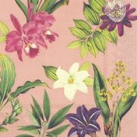 Servietten 25x25 cm - FLOWERS OF PARADISE apricot