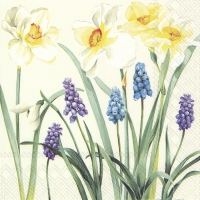 Servietten 25x25 cm - SPRING FLOWERS cream