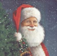 Servietten 25x25 cm - SANTA IS WAITING FOR CHRISTMAS