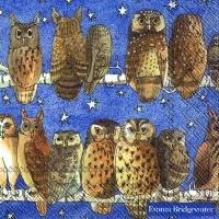 Lunch Servietten OWLS