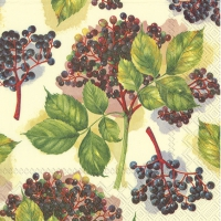 Servietten 33x33 cm - ELDERBERRY cream