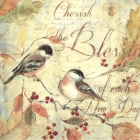 Servietten 33x33 cm - CHERISH THE BLESSINGS...