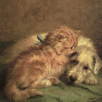 Servietten 33x33 cm - DOG AND CAT