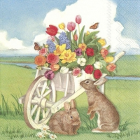 Servietten 33x33 cm - EASTER BARROW