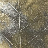 Servietten 33x33 cm - THE LEAF gold