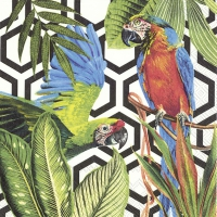 Servietten 33x33 cm - TROPICAL PARROTS black