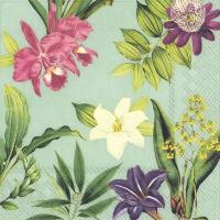Servietten 33x33 cm - FLOWERS OF PARADISE mint