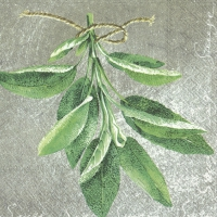 Servietten 33x33 cm - HERBAL FLAVOUR SAGE