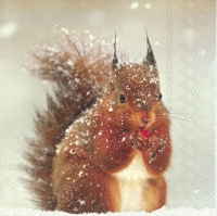 Servietten 33x33 cm - WINTER SQUIRREL