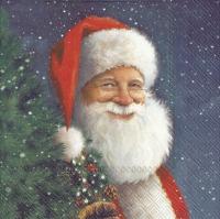 Servietten 33x33 cm - SANTA IS WAITING FOR CHRISTMAS