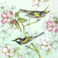 Servietten 33x33 cm - BIRDS SYMPHONY green