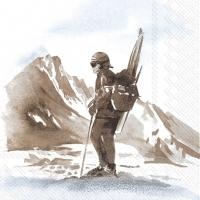 Servietten 33x33 cm - ABENTEUER