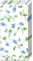 Taschentücher - VIOLA RIVINIANA white