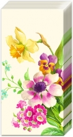 Taschentücher - WILLKOMMEN Frühlingscreme