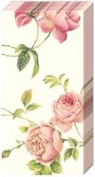 Taschentücher - NEUE RAMBLING ROSE creme