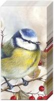 Taschentücher SWEET LITTLE BIRD