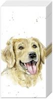 Taschentücher - FARMFRIENDS DOG