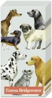 Taschentücher - DOGS light blue