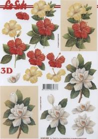 3D Bogen Hibiskusblüten Format A4