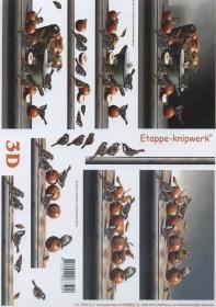 3D Bogen Vögel und Äpfel - Format A4