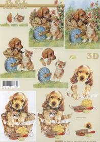 3D Bogen Format A4 - Hunde und Katzen