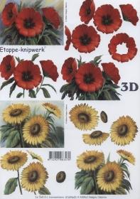 3D Bogen Format A4 - Sonnenblume + Mohn