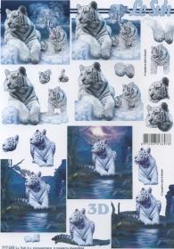 3D Bogen 2x weißer Tiger - Format A4