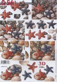 3D Bogen Seesterne - Format A4
