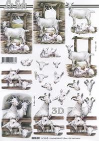 3D Bogen Ziegen - Format A4