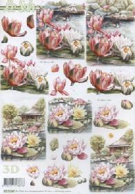 3D Bogen Seerose - Format A4