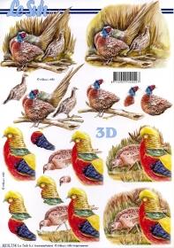 3D Bogen  - Format A4
