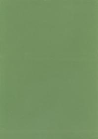 Samt Stickers Velvet-Stickerfolie - 20 x 28 cm - hellgrün