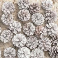 Servietten 33x33 cm - Eco-White Pine Cones