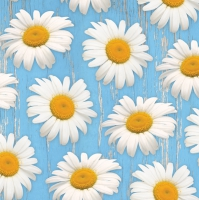 Lunch Servietten Daisies on blue Background