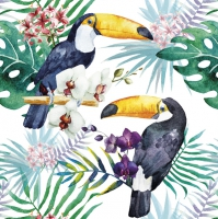 Servietten 33x33 cm - Toucans with Jungle Plants