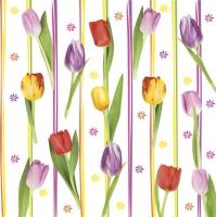 Servietten 33x33 cm - Colourful Tulip Stripes