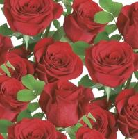 Servietten 33x33 cm - Klassische rote Rosen