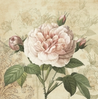 Servietten 33x33 cm - Vintage Rose mit Knospen