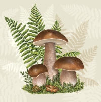 Servietten 33x33 cm - Boletus with Leaves of Fern