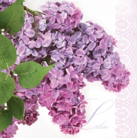 Servietten 33x33 cm - Lilac Twig