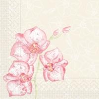 Tissue Servietten 40x40 cm - Shija (Orchidee)