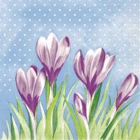 Linclass Servietten 40x40 cm - Fine  (violett/grün)