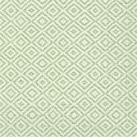 Tissue Servietten 40x40 cm - Lagos-Basis (grün)