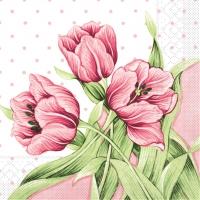 Tissue Servietten 40x40 cm - Elsa (rosa/grün)