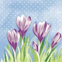 Tissue Servietten 33x33 cm - Fein (violett/grün)