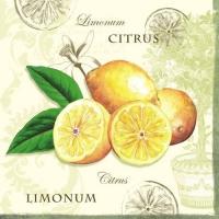 Lunch Servietten Limonum